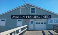 Avalon200