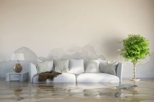 homeowners insurance outer banks nc - flood