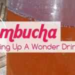 Spring Recipes Kombucha Tea