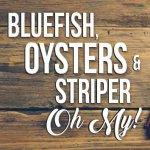 Recipes Bluefish Oysters Striper
